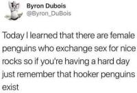 Hookers, Sex, and Penguins: Byron Dubois  @Byron_DuBois  Today I learned that there are female  penguins who exchange sex for nice  rocks so if you're having a hard day  just remember that hooker penguins  exist