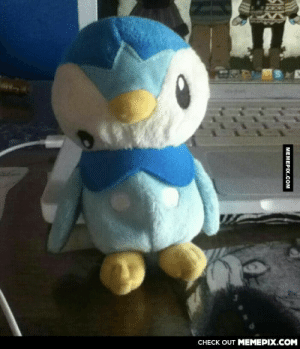 My sister bought this piplup peluche because she felt bad for itomg-humor.tumblr.com: CНЕCK OUT MЕМЕРIХ.COM  MEMEPIX.COM My sister bought this piplup peluche because she felt bad for itomg-humor.tumblr.com
