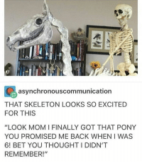 "guys its christmas in like four days: C asynchronous communication  THAT SKELETON LOOKS SO EXCITED  FOR THIS  ""LOOK MOM I FINALLY GOT THAT PONY  YOU PROMISED ME BACK WHEN I WAS  6! BET YOU THOUGHT I DIDN'T  REMEMBER!"" guys its christmas in like four days"