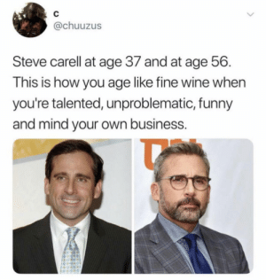 Silver fox if I ever saw one by harryjake83 MORE MEMES: C  @chuuzus  Steve carell at age 37 and at age 56  This is how you age like fine wine when  you're talented, unproblematic, funny  and mind your own business. Silver fox if I ever saw one by harryjake83 MORE MEMES