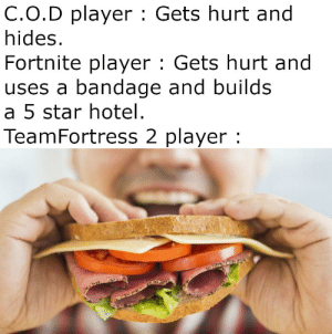 Sandvich and me are going to beat your arse.: C.O.D player : Gets hurt and  hides.  Fortnite player : Gets hurt and  uses a bandage and builds  a 5 star hotel.  TeamFortress 2 player : Sandvich and me are going to beat your arse.