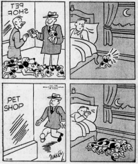"yesterdaysprint:   Courtney Dunkel in the Boston Globe, Massachusetts, November 10, 1950: (C  PET  SHOP  2""  I-10 yesterdaysprint:   Courtney Dunkel in the Boston Globe, Massachusetts, November 10, 1950"