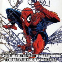 Memes, Soon..., and Spider: c)  SPIDER MAN IS THEFIRST TEENAGE SUPERHERO  TONOT BEASIDEKICKOFAN ADULTHERO Like comment and turn on post notifications giveaways coming soon