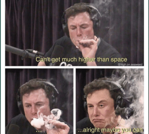 The new Space X via /r/memes https://ift.tt/2MahUMB: Ca  n't get much higher than space  @high.on.seaweed  alri  ght maybe you can The new Space X via /r/memes https://ift.tt/2MahUMB