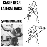 Memes, Too Much, and Exercise: CABLE REAR  LATERAL RAISE  @OPTIMUMTRAINING CABLE REAR LATERAL RAISE Main Muscle: Deltoid Secondary Muscles: Upper Back, Trapezius Exercise Type: Isolation, Push Equipment Required: Cable Pulley This shoulder and upper back exercise is a cable exercise and is a variation of the reverse fly. It's also similar to cable lateral raises, but focuses more on your upper back muscles. Instructions: 1⃣ To begin, attach a handle to a cable pulley on the lowest setting and bend down in an athletic position grasping the handle in your left hand with your back straight and your knees bent. This is the starting position. 2⃣ While maintaining a slight bend in your elbow, your back straight, and your knees bent, exhale and pull the handle out and away from your side in an arcing motion until it is parallel to the floor. As you complete this motion, concentrate on only moving at the shoulder joint and squeeze your shoulder blades. 3⃣ Pause for a moment then inhale and slowly lower the weight back to the starting position. 4⃣ Repeat for the desired number of repetitions, and then switch to the right arm. Tips: 1⃣ Keep your body stationary, being careful not to raise your torso too much or swing as you complete each repetition. 2⃣ Keep your wrists straight with your palms facing down and maintain a slight bend in the elbows. 3⃣ Concentrate on only moving at the shoulder joint and squeezing your shoulder blades together as you do the lift. OptimumTraining