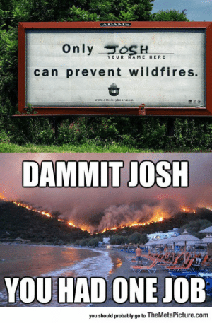 Tumblr, Blog, and Job: CADAMS  Only oSH  YOUR NAME HERE  can prevent wildfires.  www.smokeybear.com  DAMMIT JOSH  YOU HAD ONE JOB  you should probably go to TheMetaPicture.com lolzandtrollz:  Classic Josh