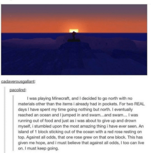 meirl: cadaverousgallant:  pacolind  I was playing Minecraft, and I decided to go north with no  materials other than the items i already had in pockets. For two REAL  days I have spent my time going nothing but north. I eventually  reached an ocean and I jumped in and swam...and swam... I was  running out of food and just as i was about to give up and drown  myself, i stumbled upon the most amazing thing i have ever seen. An  island of 1 block sticking out of the ocean with a red rose resting on  top. Against all odds, that one rose grew on that one block. This has  given me hope, and i must believe that against all odds, I too can live  on. I must keep going. meirl