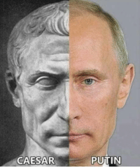 Club, Hairline, and Tumblr: CAESAR  PUTIN laughoutloud-club:  Only with a little more receded hairline