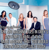 Double Tap if you watch Grey's Anatomy! 🚨💉 + Fact: The MRI machine used in grey's anatomy is real, it is the same machine that you would find in our hospitals today, they cost over 3 million dollars! 🚨💉 + - greysanatomy greys greysfacts greysabc: Cagne US Facts  THE MRI MACHINEUSED IN GREY'S  ANATOMY IS REAL ITISTHE  SAMEMACHINE THAT YOU WOULD  FINDIN OUR HOSPITALS TODAY Double Tap if you watch Grey's Anatomy! 🚨💉 + Fact: The MRI machine used in grey's anatomy is real, it is the same machine that you would find in our hospitals today, they cost over 3 million dollars! 🚨💉 + - greysanatomy greys greysfacts greysabc