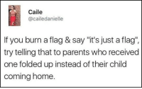 "Memes, Parents, and Home: Caile  @cailedanielle  If you burn a flag & say ""it's just a flag"".  try telling that to parents who received  one folded up instead of their child  coming home. ""It's just a flag"" greaterhalf"