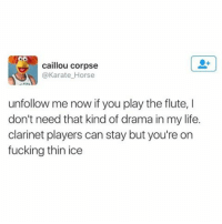 Same goes for me. (twitter: karate_house): caillou corpse  @Karate Horse  unfollow me now if you play the flute, l  don't need that kind of drama in my life.  clarinet players can stay but you're on  fucking thin ice Same goes for me. (twitter: karate_house)