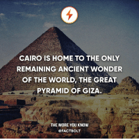 Memes, The More You Know, and Home: CAIRO IS HOME TO THE ONLY  REMAINING ANCIENT WONDER  OF THE WORLD THE GREAT  PYRAMID OF GIZA  THE MORE YOU KNOW  @FACTBOLT Follow the world with @intravelist ✈️🌏 — The other 6 of the 7 wonders of the ancient world that were destroyed include The Colossus of Rhodes, the Lighthouse of Alexandria, the Mausoleum at Halicarnassus, Hanging Gardens of Babylon, the Temple of Artemis, and the Statue of Zeus.