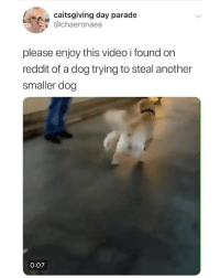 Memes, Reddit, and Video: caitsgiving day parade  achaeronaea  please enjoy this video i found orn  reddit of a dog trying to steal another  smaller dog  0:07 see ya 👋🏻