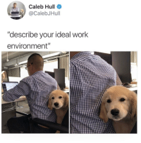 "@studentlifeproblems: Caleb Hull  CalebJHull  ""describe vour ideal work  environment"" @studentlifeproblems"