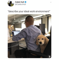 "this is ideal (@calebjhull on Twitter): Caleb Hull  @CalebJHull  ""describe your ideal work environment""  10 this is ideal (@calebjhull on Twitter)"