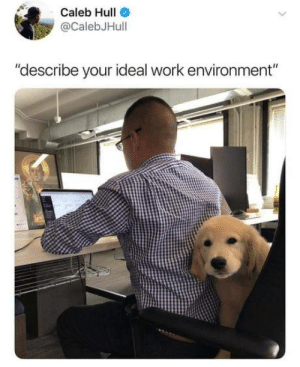 "I just wonder if the one in front of him is the boss.: Caleb Hull  @CalebJHull  ""describe your ideal work environment"" I just wonder if the one in front of him is the boss."