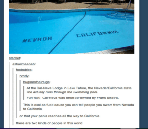 Borderomg-humor.tumblr.com: CALIFDRNIR  NEVADA  starrlet:  allhailmeenah:  foxbabies:  rvndy:  hugsandhairtugs:  At the Cal-Neva Lodge in Lake Tahoe, the Nevada/California state  line actually runs through the swimming pool.  Fun fact: Cal-Neva was once co-owned by Frank Sinatra.  This is cool as fuck cause you can tell people you swam from Nevada  to California  or that your penis reaches all the way to California  there are two kinds of people in this world Borderomg-humor.tumblr.com