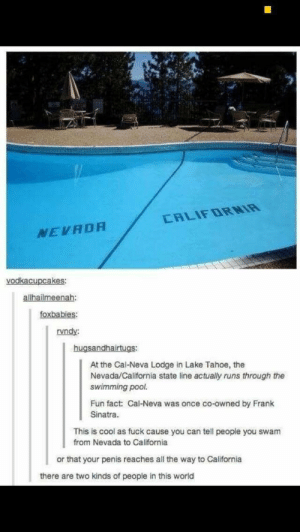 Me Irl by pussynate6969 MORE MEMES: CALIFDRNIR  NEVADA  vodkacupcakes  allhailmeenah  foxbabies  rvndy:  hugsandhairtugs:  At the Cal-Neva Lodge in Lake Tahoe, the  Nevada/California state line actually runs through the  swimming pool.  Fun fact: Cal-Neva was once co-owned by Frank  Sinatra.  This is cool as fuck cause you can tell people you swam  from Nevada to California  or that your penis reaches all the way to California  there are two kinds of people in this world Me Irl by pussynate6969 MORE MEMES