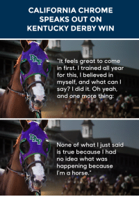 """Chrome, Target, and True: CALIFORNIA CHROME  SPEAKS OUT ON  KENTUCKY DERBY WIN   It feels great to come  in first. I trained all year  for this, I believed in  myself, and what can I  say? I did it. Oh yeah,  and one more thing   None of what I just said  is true because I had  no idea what was  happening because  I'm a horse."""" <p><a href=""""https://www.youtube.com/watch?v=79NAa7OfGLY&list=UU8-Th83bH_thdKZDJCrn88g"""" target=""""_blank"""">California Chrome weighs in</a> on his big win at the Derby!</p>"""