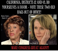 Nancy Pelosi: CALIFORNIA, DISTRICTS 12 AND 43, DO  YOURSELVES A FAVOR - VOTE THESE TWO OLD  HAGS OUT OF OFFICE!  Maxine Waters  District  Nancy Pelosi-12  MAKE CONGRESS GREAT AGAIN!
