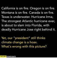 "Everything.: California is on fire. Oregon is on fire.  Montana is on fire. Canada is on fire.  Texas is underwater. Hurricane lrma,  The strongest Atlantic hurricane ever  is about to slam into Florida, with  deadly Hurricane Jose right behind it  Yet, our ""president"" still thinks  climate change is a hoax.  What's wrong with this picture?  OCCUPY  DEMOCRATS Everything."