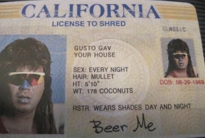 License to Shred: CALIFORNIA  LICENSE TO SHRED  CLASS:C  GUSTO GAV  YOUR HOUSE  SEX: EVERY NIGHT  HAIR: MULLET  HT: 5'10  WT: 178 COCONUTS  DOB: 08-29-1969  RSTR: WEARS SHADES DAY AND NIGHT  Beer Me License to Shred
