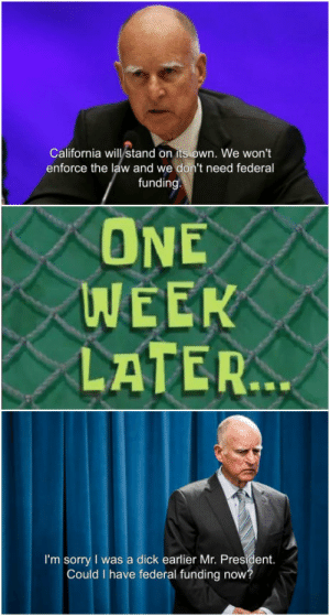 Club, Sorry, and Tumblr: California will stand on its own. We won't  enforce the law and we don't need federal  fundin  ONE  WEEK  LATER  I'm sorry I was a dick earlier Mr. President.  Could I have federal funding now laughoutloud-club:  My state's government everyone: absolutely no clairvoyance, ever, about anything except pandering to idiots to get votes.