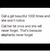 Beautiful, Girls, and Memes: Call a girl beautiful 1000 times and  she won't notice.  Call her fat once and she will  never forget. That's because  elephants never forget Fat girls 😍😍😍
