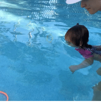 Dad, Lol, and Memes: Call me a proud Dad, but only a few weeks ago this little one was learning the ropes of water. Now she's diving (aided) for Rings at 19 months. - Swimming lessons as a kid for me were a horrible experience, it wasn't fun. Her weekly lesson along with these (homework) lessons are teaching her many things & skills whilst making it fun, it's also taught me every damn nursery rhyme which now HAUNTS me in the day!!! What parents now what I'm talking about! Lol WheelsOnTheBus Swimming WatchOutPhelps DiveChamp2017 Fun SwimmingLessons