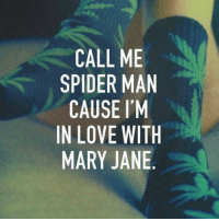 Memes, 🤖, and Marie: CALL ME  SPIDER MAN  CAUSE I'M  IN LOVE WITH  MARY JANE 💚💚💚