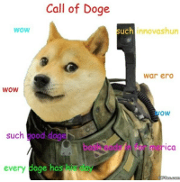 Doge, Wow, and Good: Call of Doge  WoW  such innovashun  war erd  WOW  wow  such good doge  bash eads in for merica  every  doge has his day