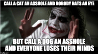 Advice, Love, and Tumblr: CALLA CATAN ASSHOLE AND NOBODY BATS AN EYE  BUT CALIADOG AN ASSHOLE  AND EVERYONE LOSES THEIR MINDs  imgfip.com advice-animal:  i love my dog.