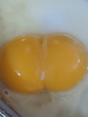 "Called my 4 y.o in kitchen to see the really cool egg that had a double yolk, she laughed "" It looks like buttcheeks, I'm not eating that"": Called my 4 y.o in kitchen to see the really cool egg that had a double yolk, she laughed "" It looks like buttcheeks, I'm not eating that"""