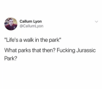 "Fucking, Jurassic Park, and Love: Callum Lyon  @CallumLyon  ""Life's a walk in the park""  What parks that then? Fucking Jurassic  Park? Don't claim to love traveling if you don't follow @epicexplorepage 🌋"