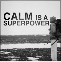 Bad, Memes, and Power: CALM IS A  SUPER POWER  www.PRINCEEA.coM Remaining calm in bad situations is rare but a much needed quality. Motivation Inspire Positive Greatness PrinceEa Gratefulness Liveinthemoment