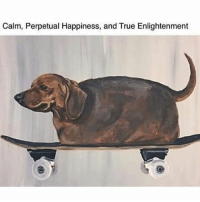 Memes, True, and Happiness: Calm, Perpetual Happiness, and True Enlightenment my safe place