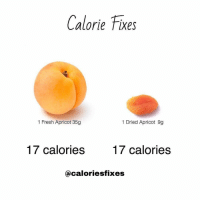 RT @Caloriesfixes: Fresh fruit vs. Dried fruit 🍑 https://t.co/P0gQahUuqs: Calorie Fixes  1 Fresh Apricot 35g  1 Dried Apricot 9g  17 calories  17 calories  @caloriesfixes RT @Caloriesfixes: Fresh fruit vs. Dried fruit 🍑 https://t.co/P0gQahUuqs