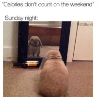 """Calories also don't count when you don't give a fuck!: """"Calories don't count on the weekend""""  Sunday night  TAYLORMENO Calories also don't count when you don't give a fuck!"""
