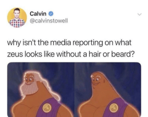 Beard: Calvin  @calvinstowell  why isn't the media reporting on what  zeus looks like without a hair or beard?