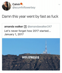 Hehe: Calvin  @scumfxflowerboy  Damn this year went by fast as fuck  amanda walker囝@amandawalker247  Let's never forget how 2017 started...  January 1, 2017  HoLLYweeD Hehe