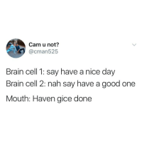 Brain, Good, and Girl Memes: Cam u not?  @cman525  Brain cell 1: say have a nice day  Brain cell 2: nah say have a good one  Mouth: Haven gice done How do I play Final Fantasy 8 on mac