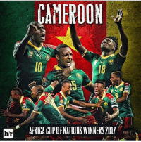 Memes, 🤖, and Cid: CAMEROON  AFRICA CUP OF NATIONS WINNERS 2017  b/r  CID  00 Os leões acordaram 👊🏽
