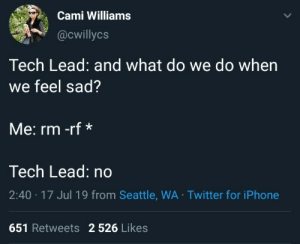 programmerhumour:  Sounds about right to me: Cami Williams  @cwillycs  Tech Lead: and what do we do when  we feel sad?  Me: rm -rf*  Tech Lead: no  2:40 17 Jul 19 from Seattle, WA Twitter for iPhone  651 Retweets 2 526 Likes programmerhumour:  Sounds about right to me