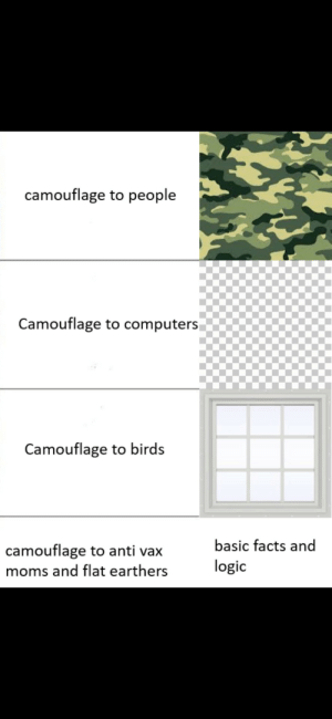 Invest in this format! via /r/MemeEconomy https://ift.tt/32FZA71: camouflage to people  Camouflage to computers  Camouflage to birds  basic facts and  camouflage to anti vax  logic  moms and flat earthers Invest in this format! via /r/MemeEconomy https://ift.tt/32FZA71