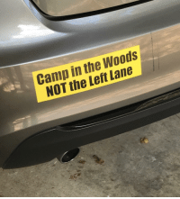 Left Lane: Camp in the Woods  NOT the Left Lane
