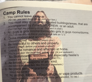 """Booty, Check Yourself, and Drugs: Camp Rules  1. You cannot leave campus.  (No cap, you can't finna dip set with your fam.)  2. You must stay in camp designated buildings/areas, that are  accompanied by Zona Staff, CREW, or an adult.  (Don't be high key ghosting on us. That ain't it chief.)  3. No guys in girls rooms/dorms, No girls in guys rooms/dorms.  (Don't do me dirty on this or you're gonna take an """"L""""I)  4 Dress modest and appropriate.  (Respect yourself. You boujee beauty you.)  5. Be respectful to others and property  (Check yourself, before you wreak yourself)  6. Leave the romance and affection at home.  (You're just doin' the most fam, and no cap, it's just awkward.)  7. No Skateboards, scooters, and especially heelie's  (Heelie's are booty, so are neck injuries. FACTS.)  8. No knives or weapons of any kind.  (No need to be extra fam; flex this stuff elsewhere.)  9. No prank items or pranking.  (Weird flex but ok.)  10. No alcohol, tobacco, illegal drugs, or vape products.  (Yeet the ghetto at home fam or you finna get canceled, no cap.) Hip rule set for the youth camp I'm a counselor at"""