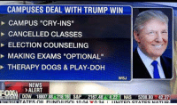 """dog playing: CAMPUSES DEAL WITH TRUMP WIN  CAMPUS """"CRY-INS""""  CANCELLED CLASSES  ELECTION COUNSELING  MAKING EXAMS """"OPTIONAL""""  THERAPY DOGS & PLAY-DOH  WSJ  NEWS  >ALERT  NETWORK I  o  FIINDII ISO) 1004.  n 24."""