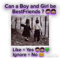 Friends, Memes, and Best: Can a Boy and Girl be  Best Friends?  Like Yes  Ignore No