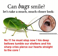 Hearts, Smile, and The Core: Can bugs smile?  let's take a much, much closer look:  0000000000000000h  No !I! he must stop now ! his deep  bellows tumble our shelters and his  sharp cries pierce our hearts straight  to the core! brace to minimalist transcendence!! ... boom https://t.co/bYDEuuDrFo