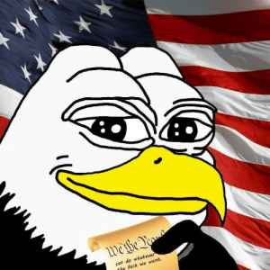 America, Fuck, and History: can do whatever  the fuck we want Dear unamerican commies, if you actually paid attention in history class, you would know America is a innocent until proven guilty legal system. Not charging Trump with anything IS exoneration, no amount of deep state weasel words or commie mental acrobatics will change that.